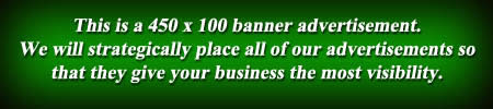 Professional Banner Advertising Ad - Inexpensive and Affordable! 450 x 100 marketing advertisement